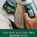 The Best Electric Tea Kettle with Temperature Control